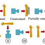 A Robotics Perspective on Experimental Injury Biomechanics of Human Body Upper Extremities.